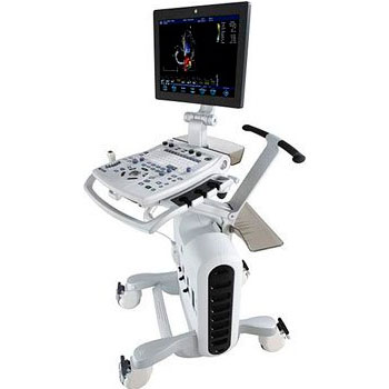 ultrazvukovoy skaner ge healthcare vivid s6